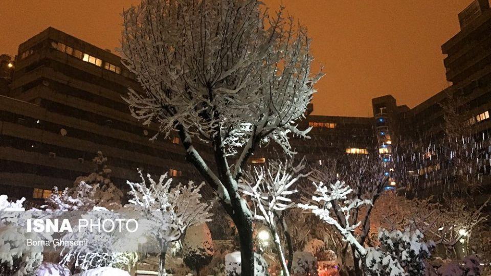 بارش برف تهران را سفید پوش کرد