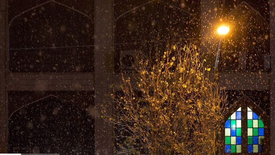 شب برفی پایتخت (3)