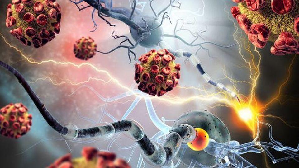 وجود کپک مواد غذایی، عامل ایجاد سرطان کبد