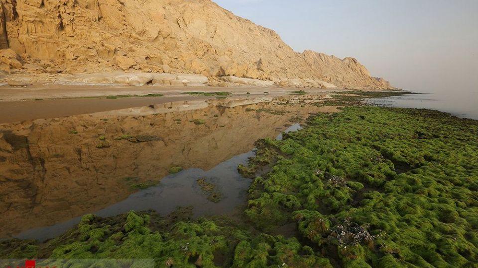 جلوه بینظیر یک ساحل ایرانی که عمر چندانی ندارد