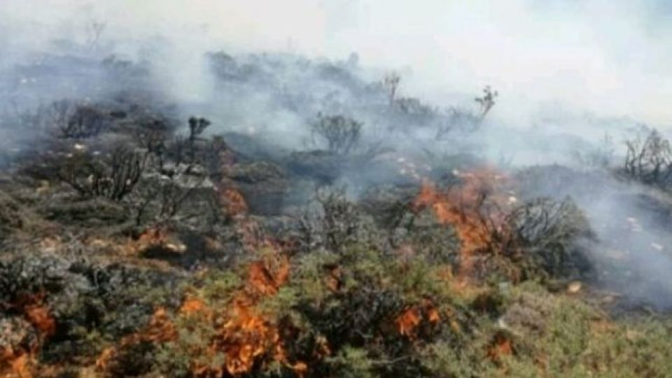 آتشسوزی خائیز به طور کامل مهار شد
