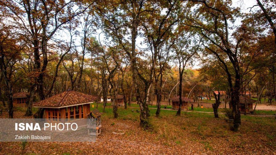 پارک جنگلی ساری
