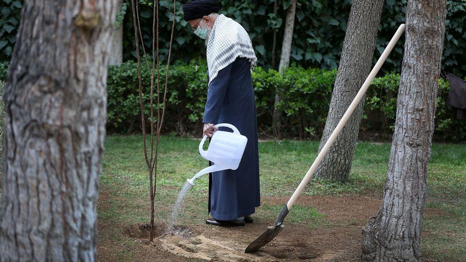 کاشت نهال توسط رهبر انقلاب در هفته منابع طبیعی