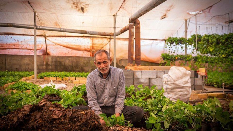 محلات، پایتخت گل ایران