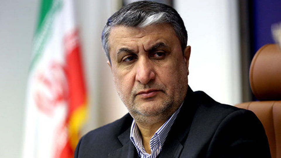اسلامی: ایران به دنبال تامین ۵۰ درصد برق کشور از انرژی هسته ای است