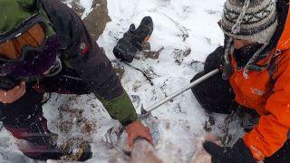 کشف ۵ نیم تنه جانباختگان حادثه سقوط هواپیما در ارتفاعات دنا