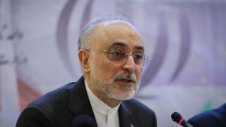 علی اکبر صالحی: آمادگی داریم به شرایطی به مراتب بالاتر از قبل برجام بازگردیم
